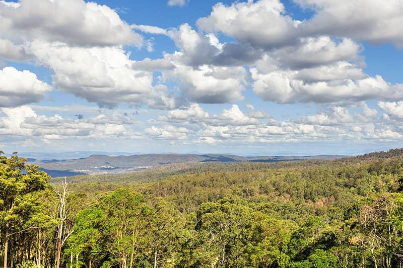 Forest | Holiday Mountain Retreat | Queensland | Ravensbourne Escape