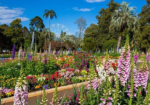 Garden | Holiday Mountain Retreat | Queensland | Ravensbourne Escape